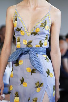 Altuzarra Spring 2017 Ready-to-Wear Fashion Show Details