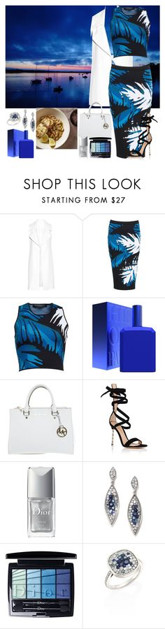 """""""Winter in the south of France"""" by denibrad ❤ liked on Polyvore featuring Cushnie Et Ochs, Timo Weiland, Histoires De Parfums, Michael Kors, Gianvito Rossi, Christian Dior and Plevé"""