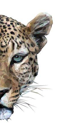 Drum by liam brazier in 2019 insane pictures art, cat art pr Tier Wallpaper, Iphone Background Wallpaper, Drawing Wallpaper, Animal Wallpaper, Animal Drawings, Art Drawings, Drawing Faces, Motif Jungle, Posca Art