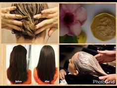 DIY Simpe Secrets Homemade Multani Mitti Shampoo For Long Thick, Dandruff Free & Shiny Hair -  CLICK HERE for The No. 1 Itchy Scalp, Dandruff, Dry Flaky Sore Scalp, Scalp Psoriasis Book! #dandruff #scalp #psoriasis You can watch beauty tip videos online for free in Hindi and Urdu with lots of natural ways and home remedies. My videos include health tips for women's health and... - #Dandruff