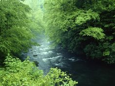 Tennessee rivers national park great smoky mountains (1600x1200, rivers, national, park, great, smoky, mountains)  via www.allwallpaper.in