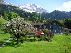 Bed & Breakfast Finel - Interlaken, Switzerland