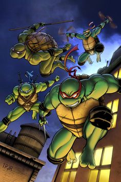 Teenage Mutant Ninja Turtles Leonardo (Leo), Michelangelo (Mike or Mikey), Donatello (Don or Donnie), Raphael (Raph) (Anthropomorphic turtles) (Manhattan, New York, U.S.A.) Crime-Fighters. Highly skilled in Ninjutsu.  Olympic-level agility, speed, strength.  Keen strategists.  Masters of stealth.  Mastery of Kenjutsu, Iaidō, Chi Gong, Kobudō, Bōjutsu, Nunchaku. Master swordsmen.  Masters of twin offensive.