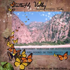 "We took a 4 day ""Blue Cruise"" down the Mediteranean coast of Turkey last week. This valley with it's 136 different species of butterflys was one of the many sights we saw. My Scrapbook, Cruise, Turkey, Butterfly, Turkey Country, Bowties, Cruises, Butterflies"