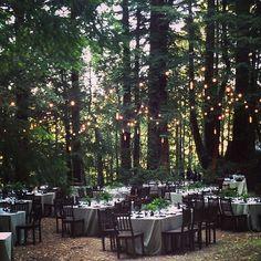 Gorgeous 100+ Forest Wedding Ideas http://weddmagz.com/100-forest-wedding-ideas/