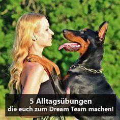 5 Alltagsübungen, mit denen du die Beziehung zu deinem Hund stärkst