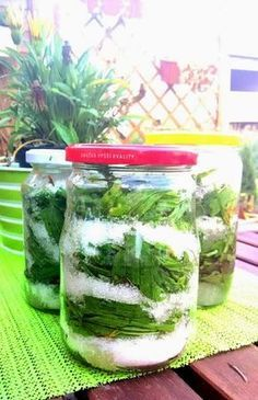 Herbal Remedies, Natural Remedies, Home Canning, Cooking Tips, Health And Wellness, Herbalism, Mason Jars, Food And Drink, Herbs