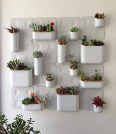 8 Active Clever Tips: Artificial Plants Office Planters artificial garden ideas.Artificial Garden Wall Boxwood Hedge artificial flowers home. Small Succulents, Succulents Garden, Cactus Decor, Plant Decor, Plant Design, Garden Design, Ideas Para Decorar Jardines, Walled Garden, Garden Living