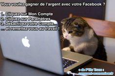 Vous connaissez le moyen pour gagner de l'argent avec votre Facebook ?  Découvrez l'astuce ici : http://www.comment-economiser.fr/gagner-argent-facebook.html