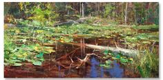 """Image of Mike Wise's 