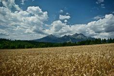 High Tatras from Mlynceky High Tatras, Milan, Explore, Mountains, Landscape, Nature, Summer, Travel, Scenery
