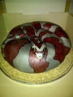 Snake Cake...Really good, except for the eyes