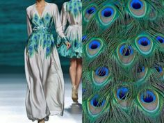 Francis Montesinos F/W 2014/15 & Peacock Feathers. Collage by Liliya Hudyakova