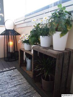 kynttilä,matto,lyhty,parveke,ruukut