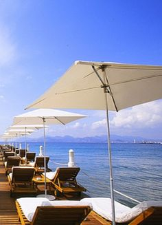 Where to Drink and Party in Cannes   The Vivant