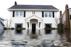 Water damage restoration requires expert training and equipment. Rainier Chem-Dry has it. We restore flood damage in Tacoma, Puyallup, Kent, and nearby. Flood Insurance, Home Insurance, Insurance Agency, Renters Insurance, Insurance Companies, Insurance Quotes, Compare Insurance, Molde, San Juan