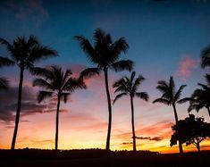 Hawaiian Palm Tree Sunset Photograph, Oahu Hawaii, Digital Download Photography, Printable Art, Nature Photography, Instant Download