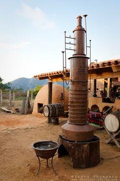 """Tequila Distillery"""" -  destilería de Tequila y horno de barro. San Sebastián, MEXICO."""