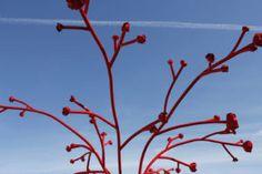Wild Metal combines a love of metal work and garden design to create create unique garden sculpture, outdoor sculpture & metal art Outdoor Sculpture, Garden Sculpture, Metal Art, Metal Working, Turning, Garden Design, Irish, Spaces, Plants