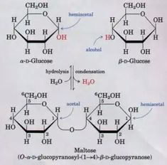 Sucrose, Lactose, Maltose: some digestible disaccharides in food | MCAT Biochem | Chemical ...