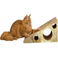 Scratch 'n Shapes Wedge Scratcher - BD Luxe Dogs & Supplies - 1