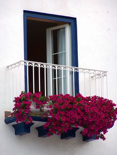 Paint only borders of your exterior door frame to beautify the area.