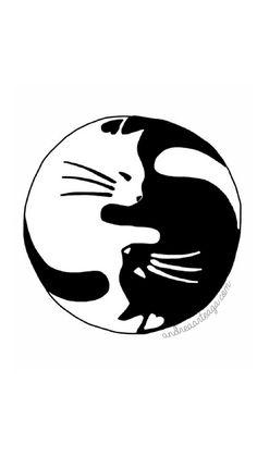 Andrea | ♡♡♡: Descarga Wallpaper de Gatitos para tu Mac, iPad o iPhone
