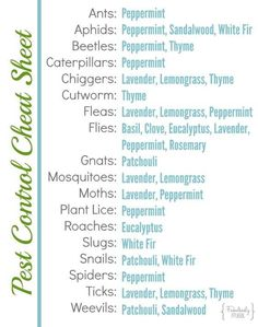 Pest Control Cheat Sheet for Ants, Aphids, Beetles, Caterpillars, Chiggers, Cutworm, Fleas, Flies, Gnats, Mosquitoes, Moths, Plant Lice, Roaches, Slugs, Snails, Spiders, Ticks and Weevils