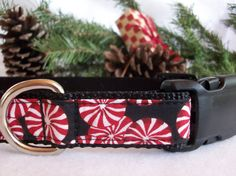 Christmas Dog Collar Xmas Candy Side Release Buckle by dogdazzle, $17.00