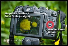 Manual focus on a pocket camera < photography tip by mark turner
