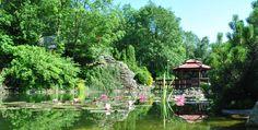 Nie masz pomysłu na oświadczyny? Nie znajdziesz bardziej romantycznego miejsca niż nasze ogrody! Piękna altana przy wodospadzie nad stawem, a w tle zapierające dech w piersiach Beskidy! Tego nie znajdziesz w innym hotelu! :) Chciałbyś coś ekstra podczas pobytu, żeby zaskoczyć drugą połówkę? Przygotujemy wszystko, aby ta chwila była wyjątkowa! ;)