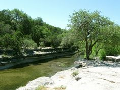 Bull Creek, Austin, Tx........ One thing I have learned since living in Texas is that (and Im sorry to knock the park service but I have to) the pictures of these parks are lame....Bull Creek is absolutely amazing and a GREAT hike, and yet you can not find ANY pictures of the most beautiful parts of it, and this boring picture does not do this place justice. I have decided to start taking photos myself and eventually I will start a blog that will rightfully catalogue the beauty of these…