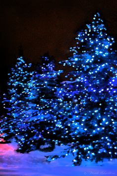 christmas - I Ll Have A Blue Christmas Without You