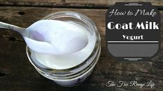 Learn how to make homemade goat milk yogurt! It's a simple process and so much better than the stuff you can find in the store!