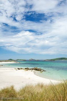 Pentle Bay, Tresco, Isles of Scilly, England Cornwall England, Great Britain, Trip Planning, Wild Flowers, Places To Visit, Coast, Island, Explore, World