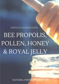 """While there are a number of different """"superfoods"""" that have proven to be highly effective at helping with fertility, Royal Jelly is more than likely the reigning King…or Queen of the bunch."""