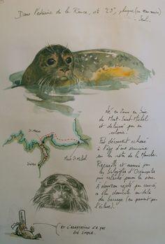 Une Bretagne par les contours/La Richardais - Publié le 26 février 2009 par yal