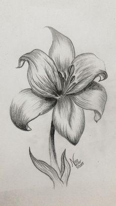 - Cuaderno de tareas, dibujos a lápiz Nature Sketches Pencil, Pencil Drawings Of Flowers, Pencil Shading, Cool Art Drawings, Pencil Art Drawings, Art Drawings Sketches, Drawing Art, Realistic Flower Drawing, Shading Drawing