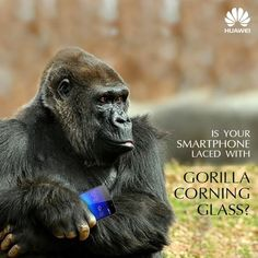 """""""#Honor6 features a third generation Corning #GorillaGlass screen which makes the screen scratch resistant. http://bit.do/Honor6 #Huaweiindia #Huaweidevice #Flipkart"""""""