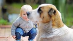 Knowing These 10 Human Behaviors That Stress Dogs Out