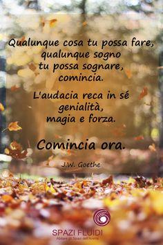 Qualunque cosa tu possa fare, qualunque sogno tu possa sognare, comincia. L'audacia reca in sé genialità, magia e forza. Comincia ora. J.W. Goethe