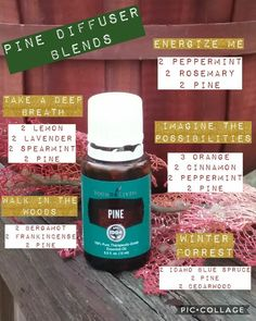 aromatherapy gifts for mom doterra essential oils gift card Pine Essential Oil, Essential Oil Diffuser Blends, Doterra Essential Oils, Young Living Essential Oils, Pine Oil, Diffuser Recipes, Yl Oils, Living Oils, Remedies