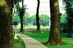 Taman Suropati ( Suropati park ) - Jakarta Id - Indonesia