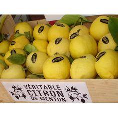 Les célèbres citrons de Menton ! Famous lemons of Menton.  #VisitCotedazur  #Cotedazur #FrenchRiviera #Gastronomie  #Gastronomy