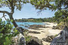 5. Waiheke Island, Nuova Zelanda | Top 10 Regioni #bestintravel