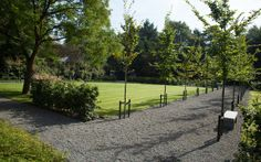 Overzicht achtertuin vanaf het schaduwterras. De paden in halfverharding met aan de rechterzijde haagbeukenbomen verbinden de verschillende ruimten met elkaar.