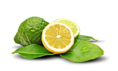 Bergamot - The tangy oil expressed from the nearly rip, nonedible Bergamot Orange. They are mostly grown in Italy and are used to flavor Earl Grey tea. Essential Oils Pimples, Bergamot Essential Oil, Essential Oils For Skin, Massage, Relax, Perfume, Natural Herbs, Health And Beauty, Curly Hair Styles