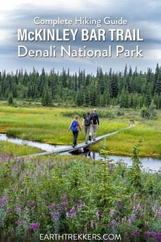 Everything you need to know to hike the McKinley Bar Trail in Denali National Park. Hiking Guide, Hiking Gear, Kenai Fjords, On A Clear Day, Hiking With Kids, Us National Parks, Travel Advice, State Parks, Travel Inspiration