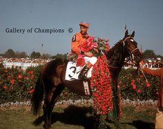 1956 Kentucky Derby Winning Race Horse Needles                                                                                                                                                                                 More