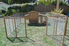Diy Chicken Coop Plans, Building A Chicken Coop, Guinea Pigs, Construction, Backyard, Outdoor Structures, Sweet Home, Outdoor Decor, Bunnies